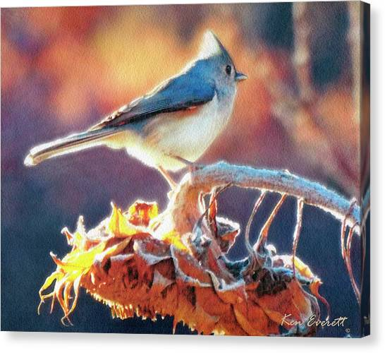 Tufted Titmouse Canvas Print - Morning Glow by Ken Everett