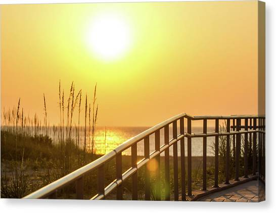 Morning Gold Canvas Print by AM Photography