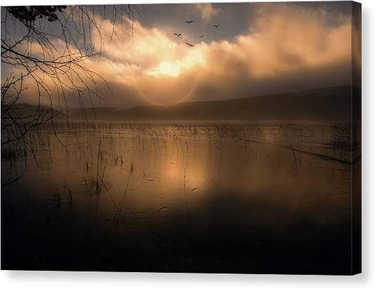Morning Has Broken Canvas Print