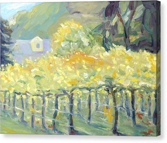 Morning In Napa Valley Canvas Print