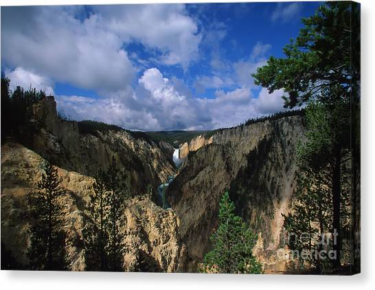 Morning In Yellowstone Canvas Print by Stan and Anne Foster