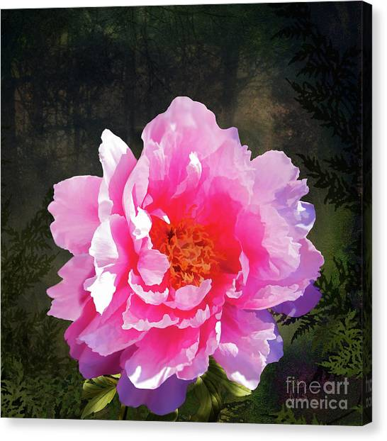 Mossy Forest Canvas Print - Morning Light, Verdant Mossy Forest, Sunlit Peony Flower, Landscape by Tina Lavoie