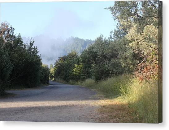 Morning Light By The Russian River Canvas Print by Remegio Onia