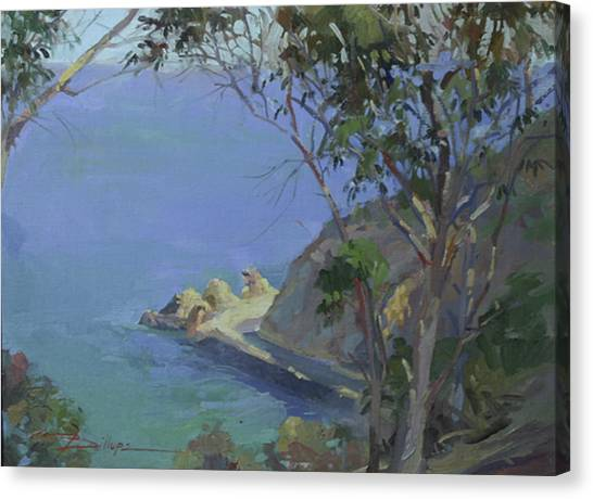 Morning Light Catalina Canvas Print
