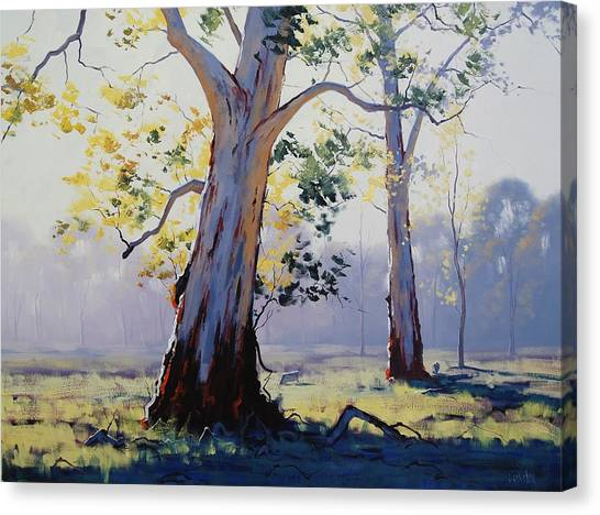 Plein Air Canvas Print - Morning Light Eucalypt by Graham Gercken