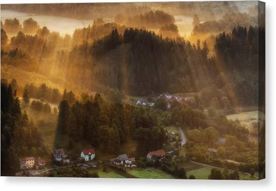 Foggy Forests Canvas Print - Morning Light by Piotr Krol (bax)