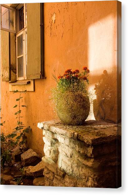 Morning Light Tuscany Canvas Print