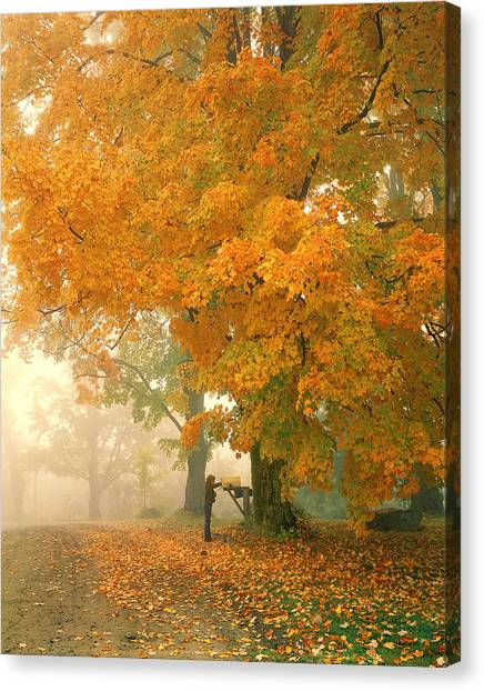 Morning Mail Cambridge Vermont Canvas Print