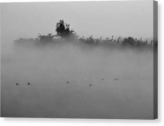 Morning Mist At Wetland Of Harike Canvas Print
