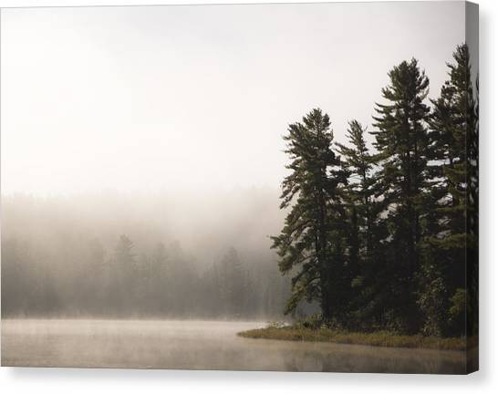 Algonquin Park Canvas Print - Morning Mist On Mew Lake by Cale Best