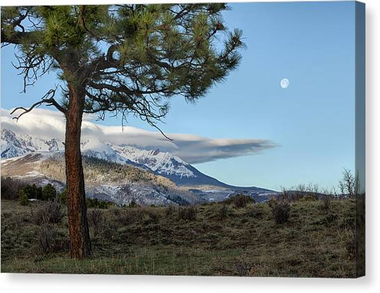 Canvas Print featuring the photograph Morning Moon by Denise Bush