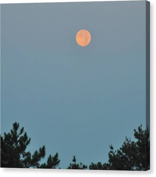 Morning Moon Canvas Print by JAMART Photography
