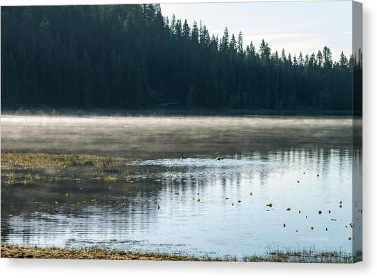 Morning On Wilson Lake  Canvas Print