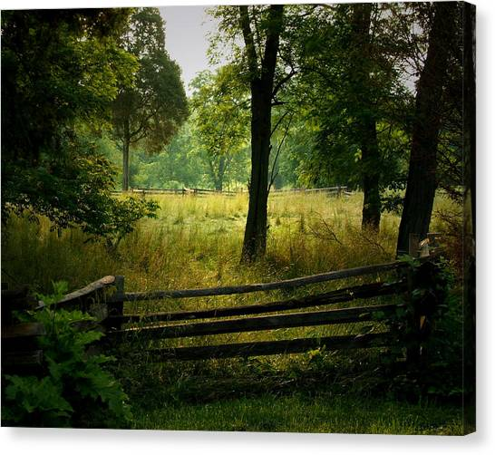Morning Pasture Canvas Print