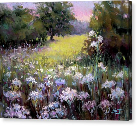 Queen Annes Lace Canvas Print - Morning Praises by Susan Jenkins