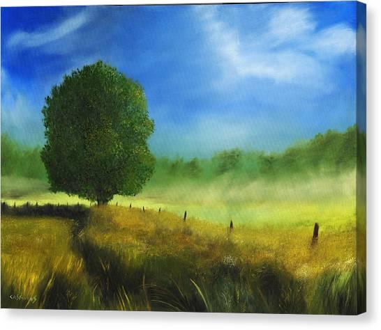 Morning Shade Canvas Print