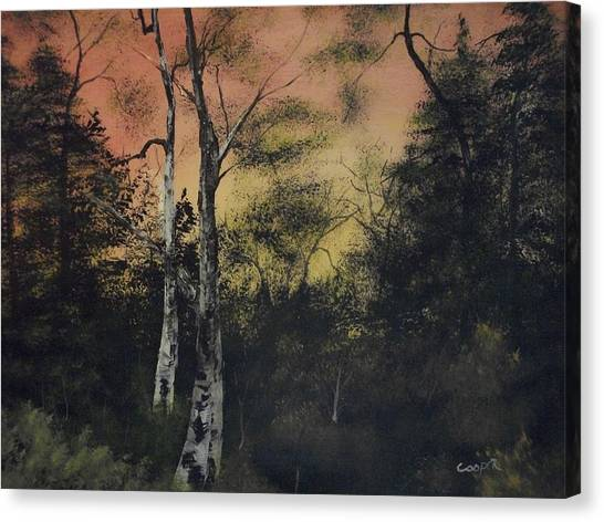 Morning Canvas Print by Shawn Cooper
