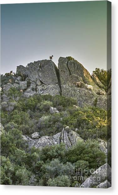 Morning Sun Lit Rocky Hill Greece Canvas Print