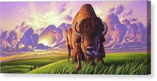 Bison Canvas Print - Morning Thunder by Jerry LoFaro