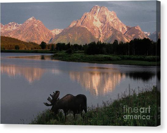 Mountain Sunrises Canvas Print - Morning Tranquility by Sandra Bronstein