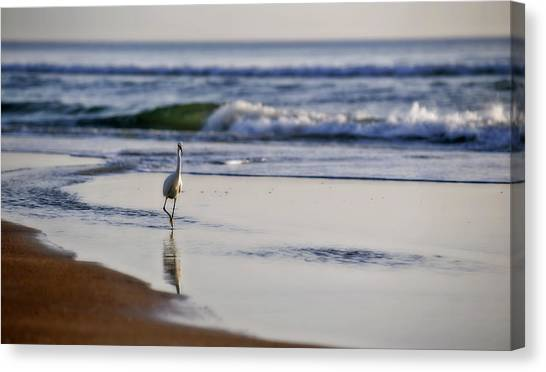 Morning Walk At Ormond Beach Canvas Print