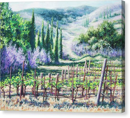 Mosby's Vines On Santa Rita Hills Canvas Print