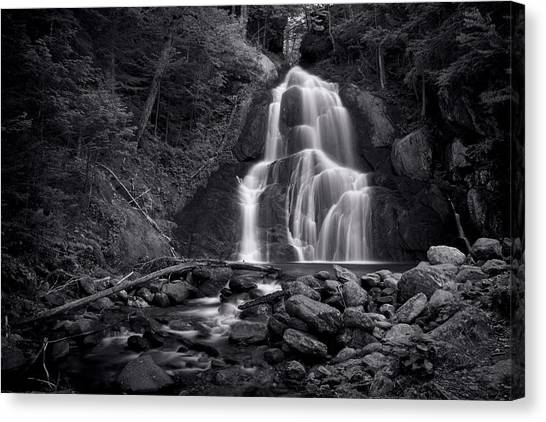 Moss Glen Falls - Monochrome Canvas Print