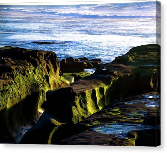 Canvas Print featuring the photograph Moss Glow by Robert McKay Jones
