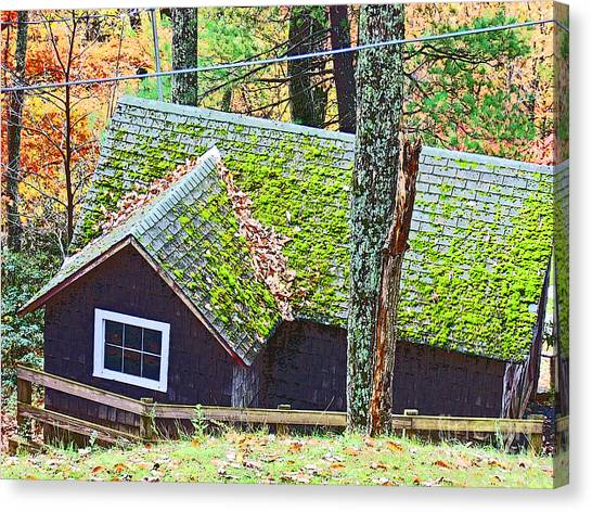 Moss Roof Canvas Print by Beebe  Barksdale-Bruner