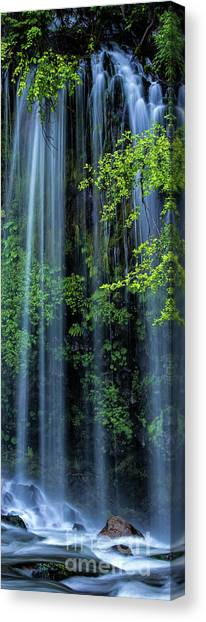 Mossbrae Falls  Canvas Print