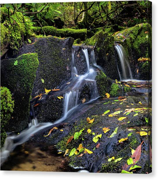 Emerald Cascades Canvas Print