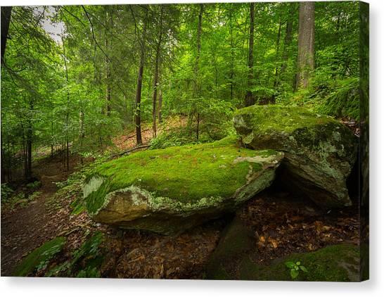 Mossy Rocks In Little Creek Park Canvas Print