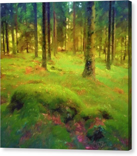 Mossy Forest Canvas Print - Mossy Woods by Lutz Baar