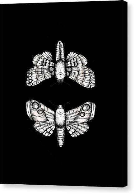 Silence Of The Lambs Canvas Print - Moth by Poetri Kempit