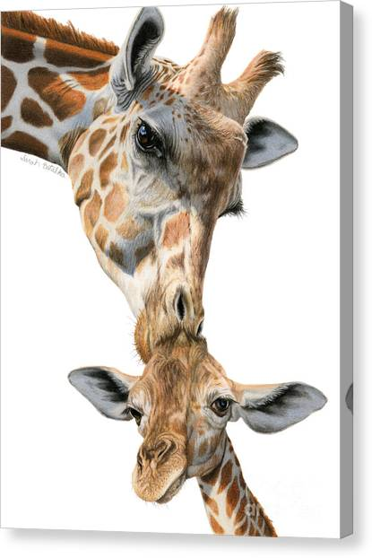 Giraffes Canvas Print - Mother And Baby Giraffe by Sarah Batalka