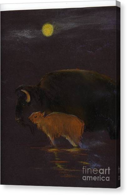 Mother Bison And Calf Canvas Print by Mui-Joo Wee