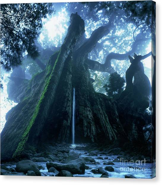 Mother Tree Canvas Print