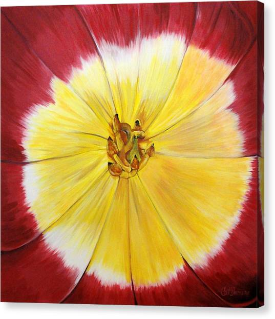 Mothers Day Tulip Face Canvas Print by Catalina Decaire