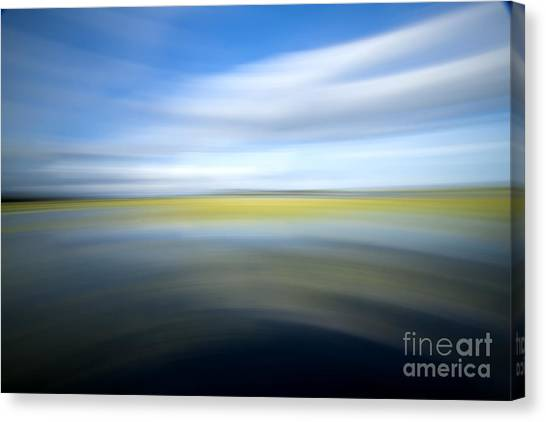 Marsh Grass Canvas Print - Motion Blur 2 by Dustin K Ryan