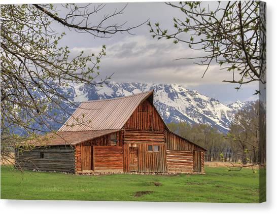 Teton National Forest Canvas Print - Moulton Barn by Lori Deiter