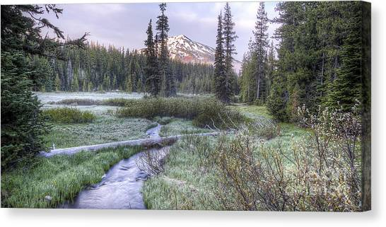 Bachelor Canvas Print - Mount Bachelor From Soda Creek At Dawn by Twenty Two North Photography