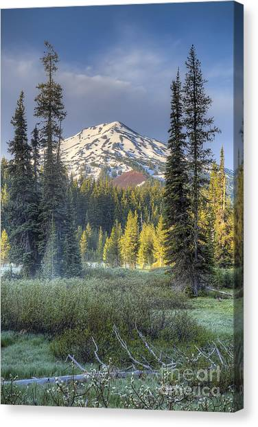 Bachelor Canvas Print - Mount Bachelor From Todd Lake by Twenty Two North Photography