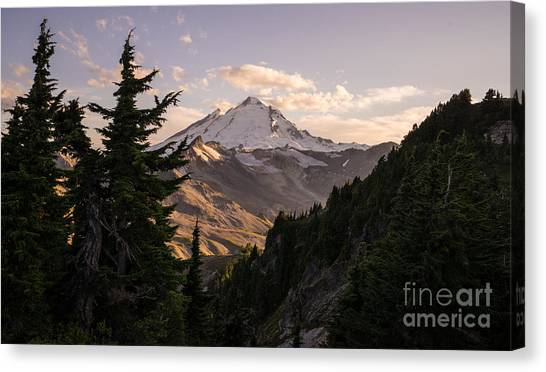 Cloud Forests Canvas Print - Mount Baker Beautiful Landscape by Mike Reid