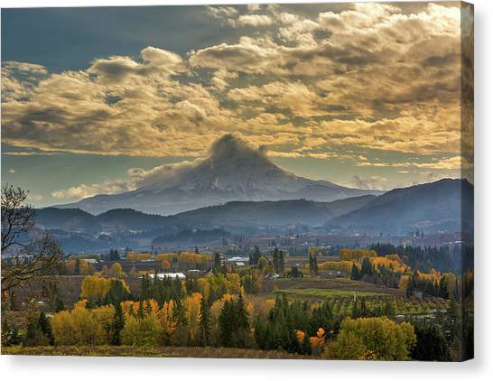 Canvas Print - Mount Hood Over Farmland In Hood River In Fall by David Gn