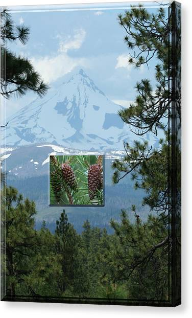 Mount Jefferson With Pines Canvas Print