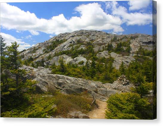 Mount Monadnock Summit From Pumpelly Trail Canvas Print