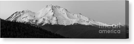 Mount Shasta  Canvas Print