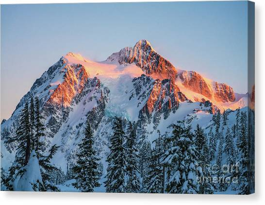 Table Mountain Canvas Print - Mount Shuksan Golden Alpenglow by Mike Reid