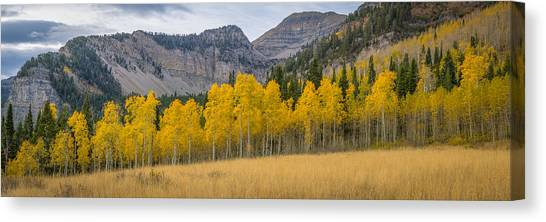 Mount Timpanogos Meadow In Fall Canvas Print