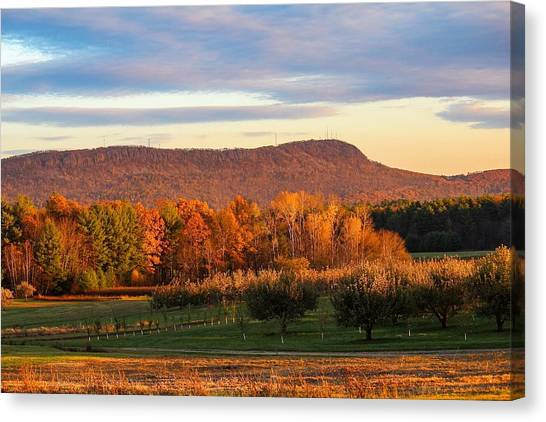 Mount Tom Foliage View Canvas Print